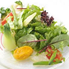 昆布〆鮮魚と十数種の野菜のカルパッチョは日本の技も融合し季節野菜をたっぷり味わえます*