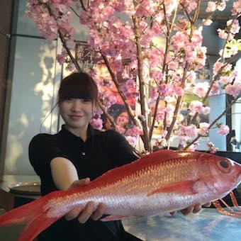 鹿児島料理の居酒屋でキッチンスタッフ!旅気分を代々木で味わえます♪
