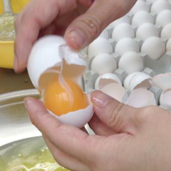 大量の殻を割り白身と黄身を分けるのも大事な作業。
