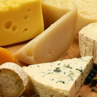 世界には多種多様なチーズがあります!知れば知るほどチーズが好きになる職場です♪