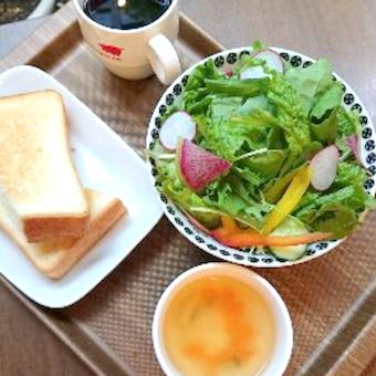 虎の門のオアシス!ニットカフェ『森のこぶた』で新鮮野菜をたっぷり使用した健康メニューを学びましょう♪