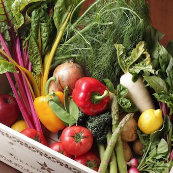 野菜は伊豆の農園から直送され減農薬栽培。新鮮野菜を美味しい料理に変身させます!