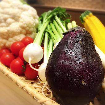 京野菜など野菜を使った料理を提供します。