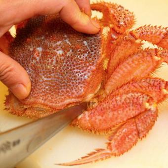 お客様の満足の証。おいしく食べてもらったお皿を洗う。誕生日には毛蟹のプレゼントあり!