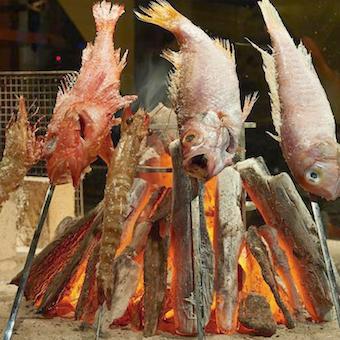 高級魚「のどぐろ」を使って魚をさばく練習ができる&大間のマグロにほぼ毎日会える極上環境。
