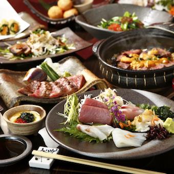 スッポンや鮮魚など高級食材をさばく!和食を極めた料理長から学べるキッチンバイト