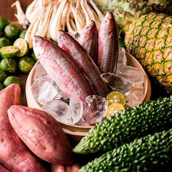 沖縄直送の新鮮な食材を使った料理を学びましょう♪