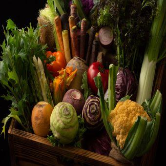 めずらしいヨーロッパ野菜も!